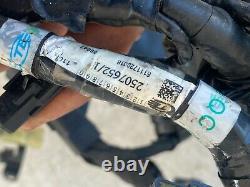 Un Faisceau Electrique Nu Reference 2507652/1 Triumph 765 Street Triple